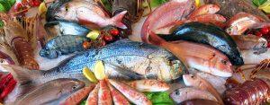 Seafood &River Water Fish